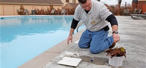 Common Pool Problems & Simple Solutions